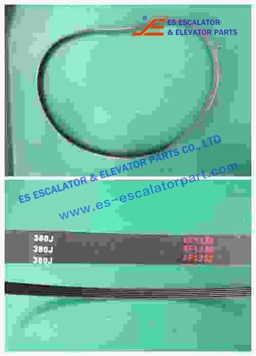 Belt 200424711